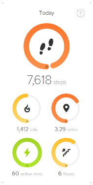Fitbit result 1 of 2