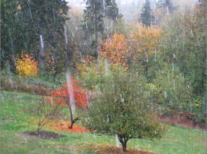 Snowing in early November in  Centralia 2017